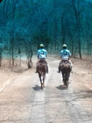 @ 2 Petugas Berkuda, penunjuk jalan menuju Menjangan Resort...