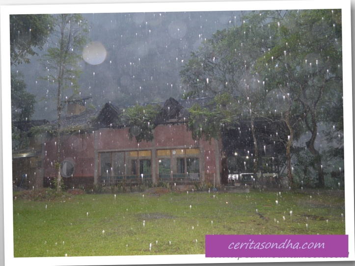Hujan di Echo Valley...