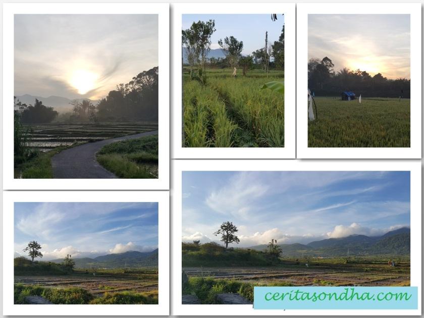 landscape-sipirok